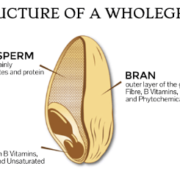 AceNuwara - Structure of a Wholegrain