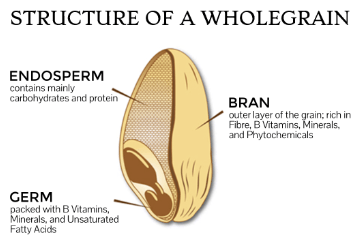 AceNuwara - Structure of a Wholegrain